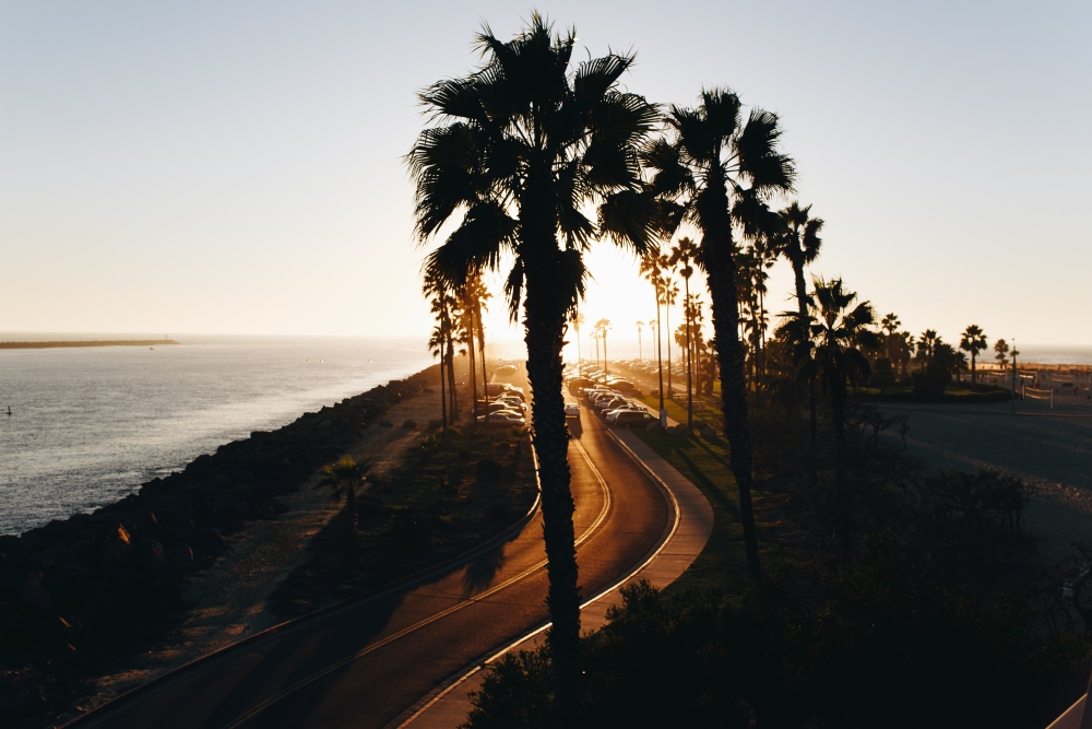 coachella-west-coast-style-hero-image-matthew-hamilton-unsplash-s